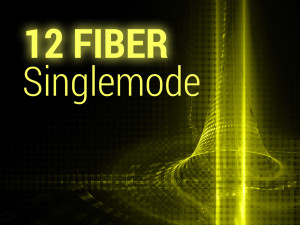 thumbnail-final-singleimode-12-fiber
